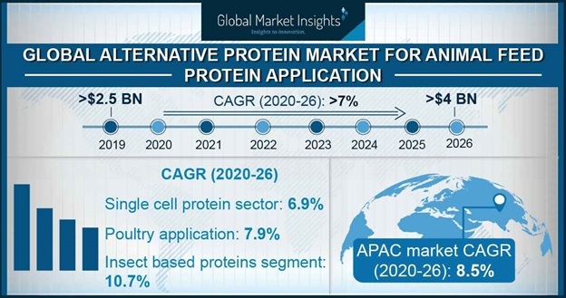 Alternative protein market