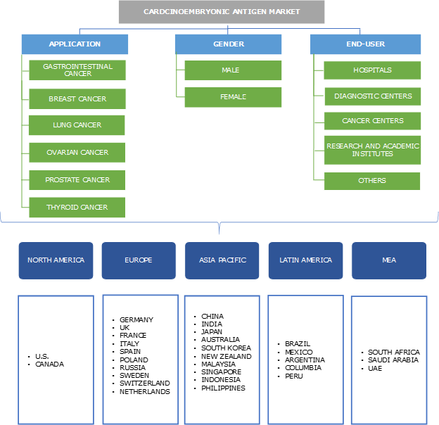 Carcinoembryonic Antigen Market Segmentation