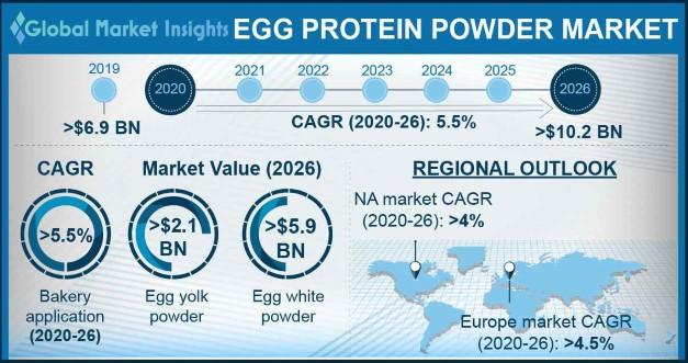 Egg Protein Powder Market Statistics