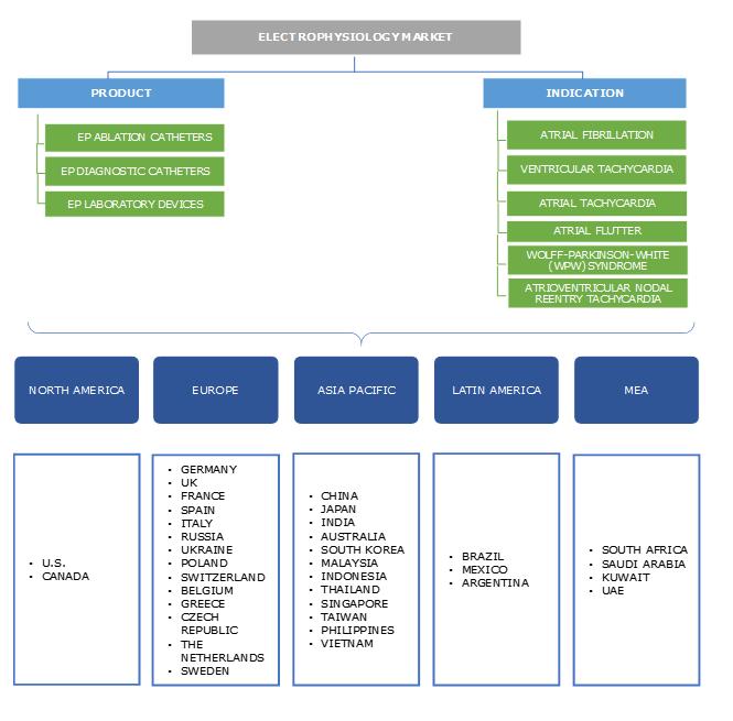 Electrophysiology Market Segmentation