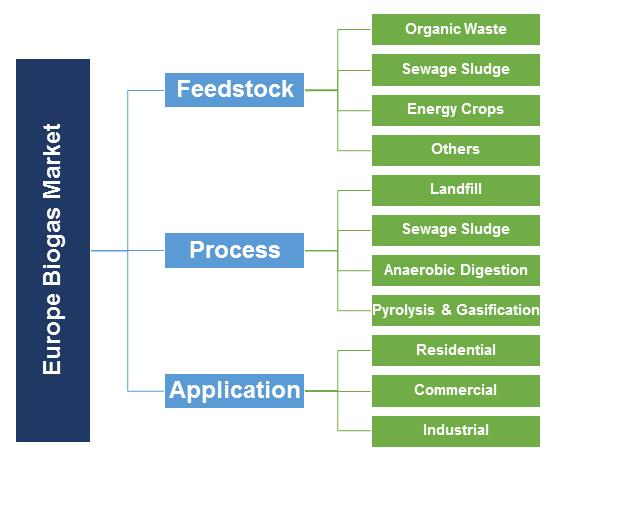 Europe Biogas Market Segmentation