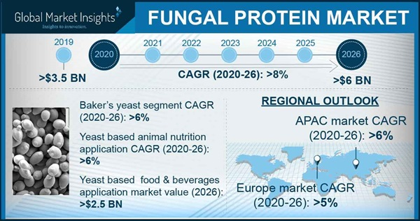 Fungal protein market