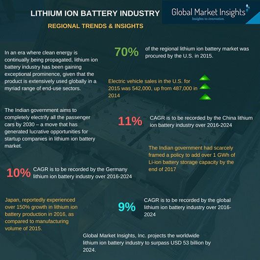 Lithium ion battery industry