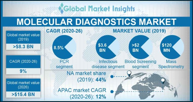 India Molecular Diagnostics Market, By Application, 2013 – 2024, (USD Million)