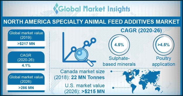 North America specialty animal feed additives market