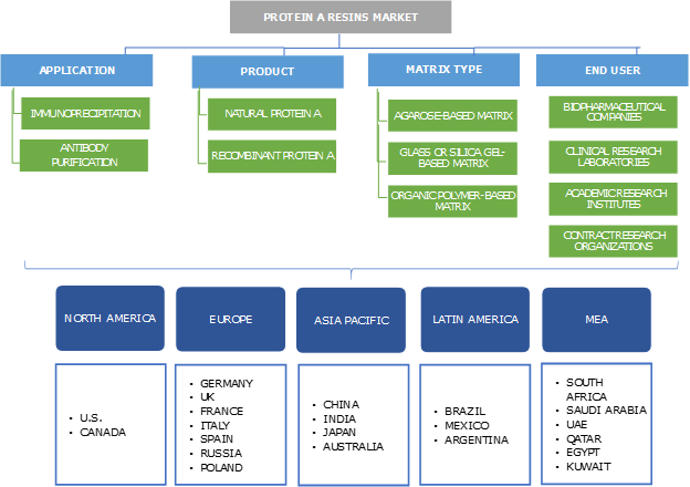 Protein A Resins Market Segmentation
