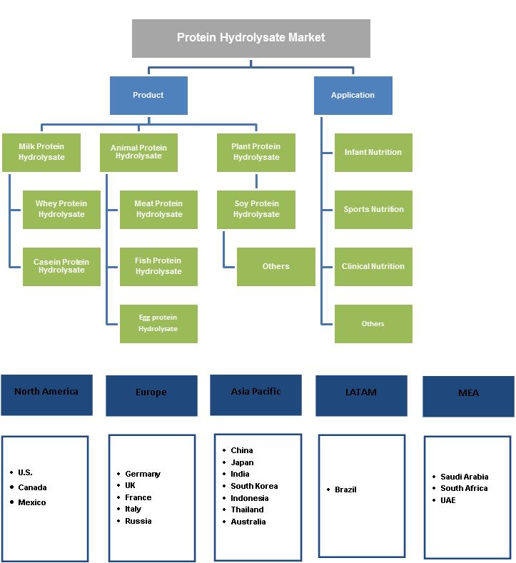 Protein Hydrolysate Market Segmentation