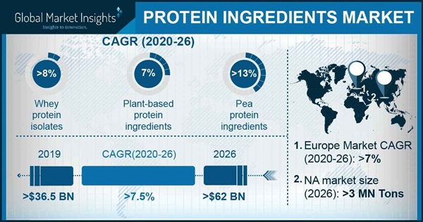 Protein Ingredient Market