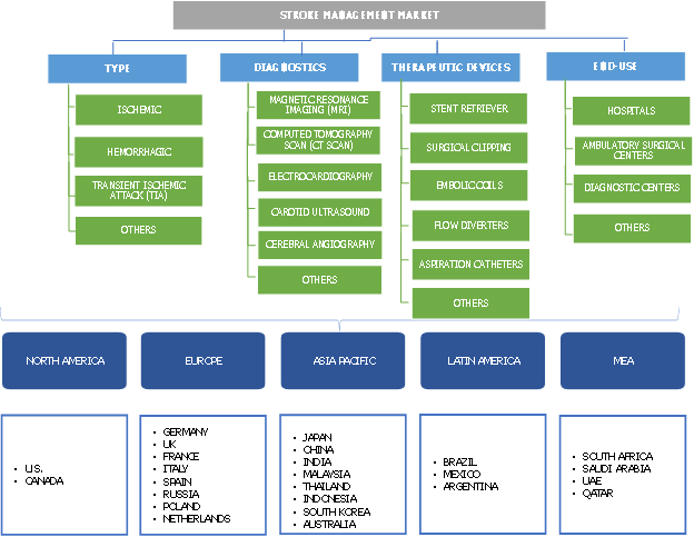 Stroke Management Market Segmentation