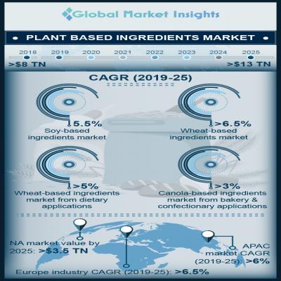 plant based ingredients market infographic